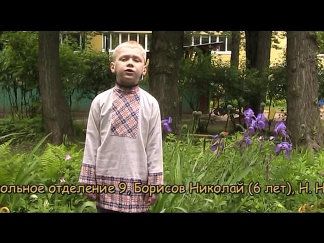 Изображение предпросмотра прочтения – НиколайБорисов читает произведение «Перед дождем» Н.А.Некрасова