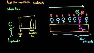Introduction to Psychology: Asch conformity studies (Asch line studies)