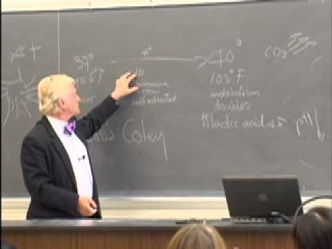 Robert Gorter Lecturing at San Francisco State University (04.06.2009)