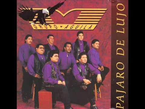 Grupo Aguila   Pajaro De Lujo