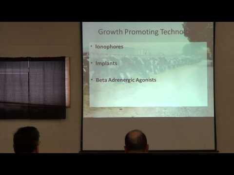 Feedlot Presentation