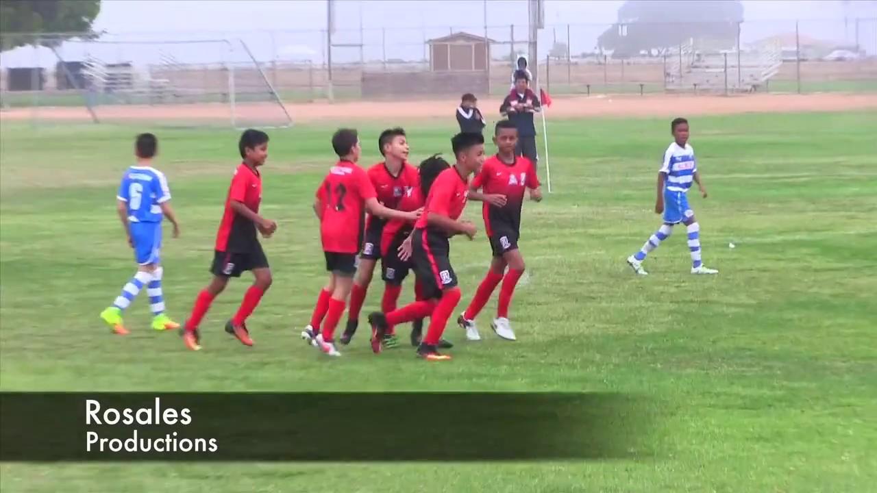 Albion Sc U  Vs Arsenal U  Us Soccer Development Academy