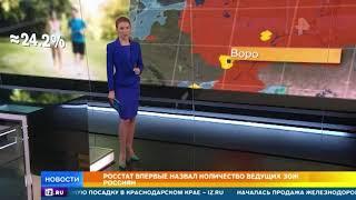 Росстат здоровый образ жизни соблюдают 12 россиян