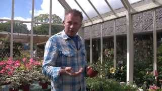 Summer Gardening tips with Toby Buckland
