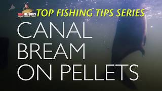 Canal Bream On Expander Pellets | Will Raison's Top Fishing Tips
