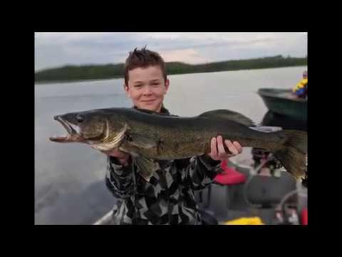Walleye fishing in Québec ! Biggest walleye caught