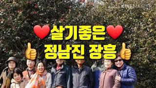 정남진 장흥명소 청매원.묵촌 동백숲