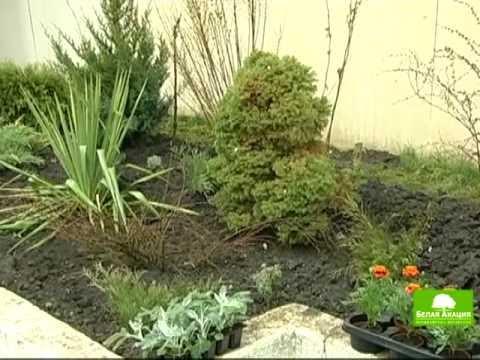 видео: Урок 5 - Цветник в саду ч-2 - Ландшафтный дизайн