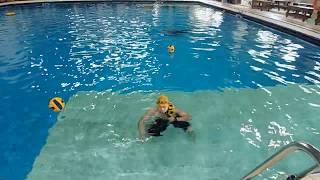 중량물 입영.중량 입영.8키로. 1분.