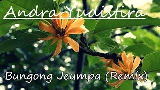 Andra Yudistira - Bungong Jeumpa (REMIX)