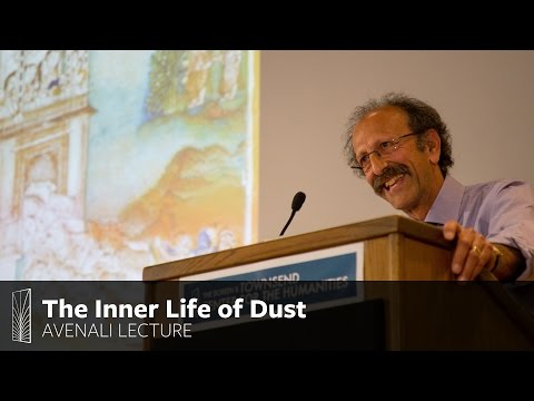 The Inner Life of Dust: A Bottom-Up View of South Asia