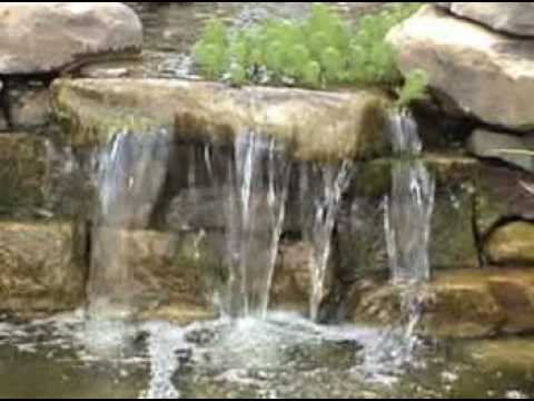 Backyard Pond With Waterfall And Fish Youtube