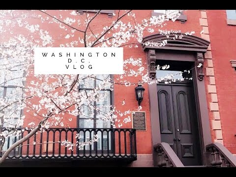 Washington D.C. Vlog   |Must Watch|