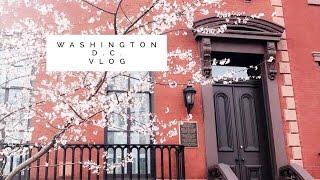 Washington D.C. Vlog   |Must Watch|