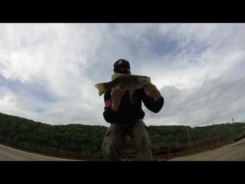 Bass Fishing EVERYWHERE in the Mon Valley and more! (Monongahela River, PA)