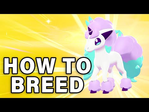 HOW TO BREED POKEMON   Shinies, Egg Types And Using Ditto ► Pokemon Sword & Shield