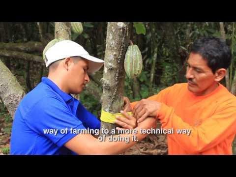 The Lindt & Sprüngli Farming Program in Ecuador