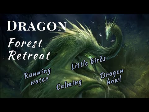 Dragon Forest Retreat | 1 hour Relax in a Dragon's Land | Soft Music | Fantasy 🌲