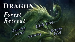 Dragon Forest Retreat | 1 hour Relax in a Dragons Land | Soft Music |