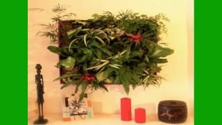 Vertical Gardening Systems | Vertical Gardening | Diy Vertical Gardening | Ideas | How To
