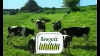 COMMERCIAL Bregott - Styrelsemöte (1998)