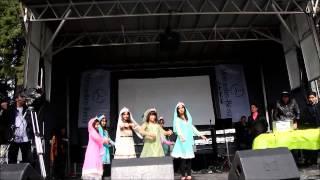 13-bedar Vancouver , 2014  سيزده بدر در ونکور (رقص ایرانی)
