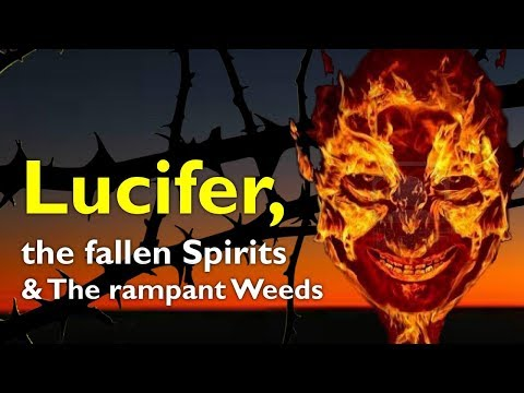 LUCIFER, THE FALLEN SPIRITS & THE RAMPANT WEEDS ❤️ TEACHING FROM JESUS