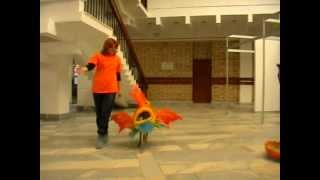 Рыба-Ежа (конкурс костюмов. Ксоло Ежа)