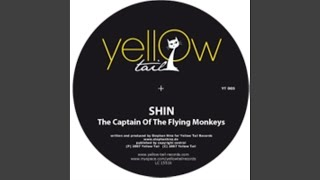 Captain Of The Flying Monkeys (Patrick Zigon Remix)
