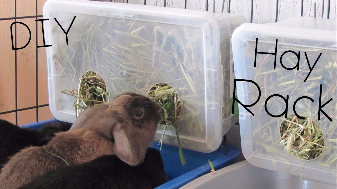 diy hay rack box super cheap
