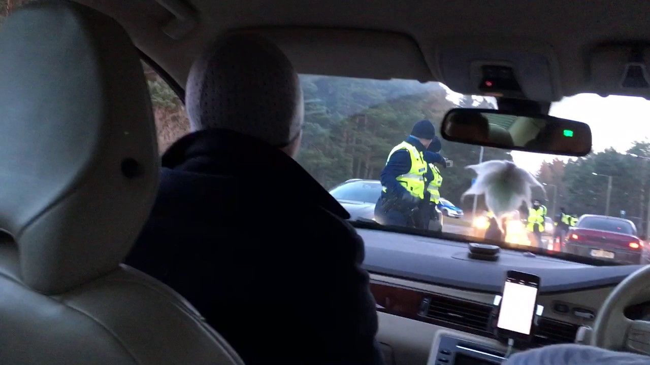 Police DUI raid humorous fail   testing passenger as a substitute the true driver (Estonia)   politsei