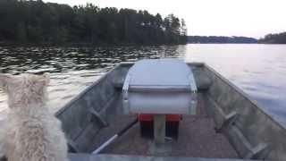 Small Flat Bottom Boat Running  On The Lake