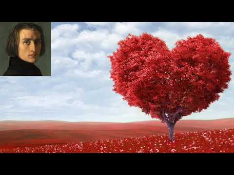 The Love Dream orchestra , Franz Liszt