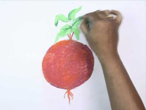 How To Draw A Beetroot Youtube