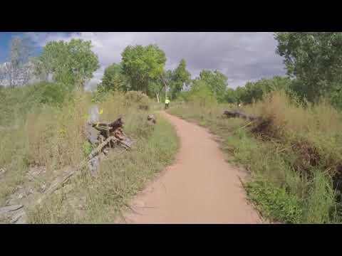 Bike Ride in the Albuquerque Bosque