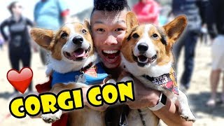 Hit up a CORGI Convention  - OVER 1k Corgis || Life After College: Ep. 602