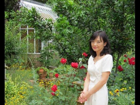 Kieko Inoue plays Dieterich Buxtehude - Ciacona e-moll