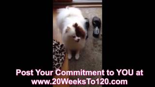 Pre-announcement Of 40 Pound Weight Loss Challenge Part One #20weeksto120
