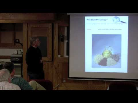 Integrating digital teaching tools and discovery learning in Plant Physiology courses ...