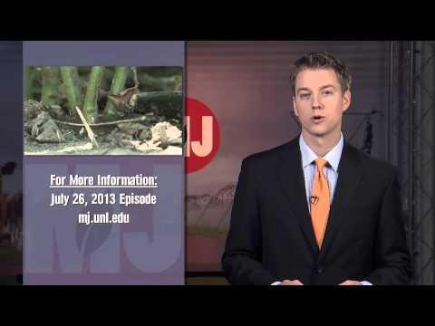 Market Journal - January 24, 2014 (full episode)