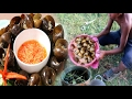 Amazing 2 Children Cook Snail - How To Cook Snail In Cambodia - Countryside Food