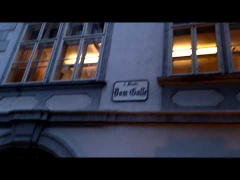 Mozart Music House in Vienna,Austria with Daniel Dimitrov