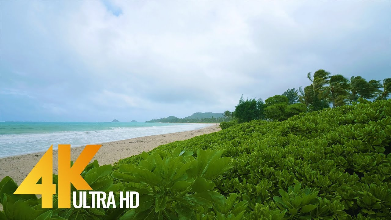 4K UHD Beach Relax Video with Ocean Waves Sounds | Hawaii - Oahu Beach (3 5  Hours Video)
