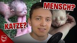Kreaturen die halb Mensch und halb Tier sind! Was steckt dahinter?