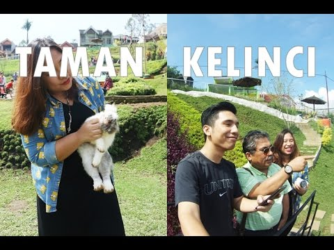 TAMAN KELINCI BATU MALANG JAWA TIMUR | #2 VJJREGINAPIT -  Info di Description box! - YouTube