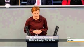 Sabine Leidig, DIE LINKE: Der Verkehrssektor ist der Zweitgrößte Klimakiller!