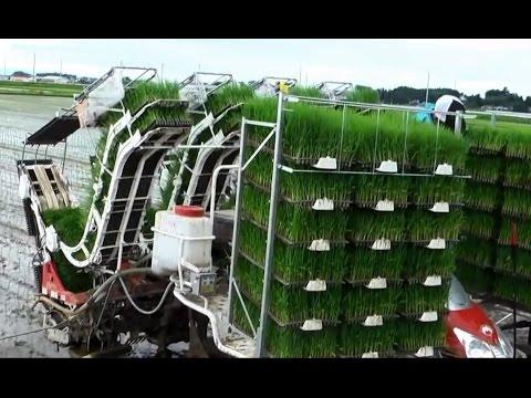 Mesin Penanam benih padi di Jepang