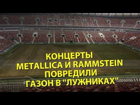Концерты Metallica и Rammstein повредили газон в