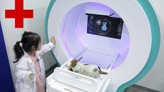 강아지를 치료해주세요!! 서은이의 직업체험관 의사 병원놀이 마트 경찰관 Pretend Play Doctor for Dog