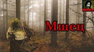 Истории на ночь - Мшец